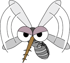 mosquito1.png
